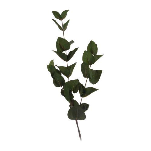 Oksa viherkasvi 60cm