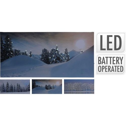 Canvas taulu led-valolla 28x58cm