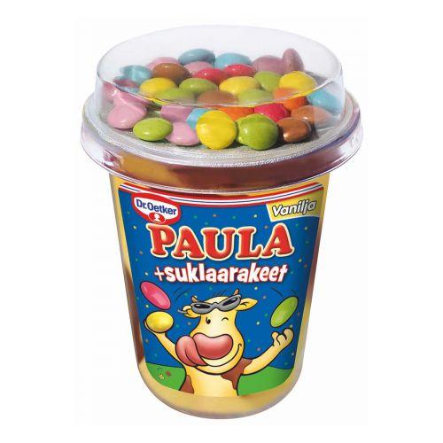 DR.OETKER PAULA VANILJA-SUKLAAVANUKAS+SUKLAARAKEET