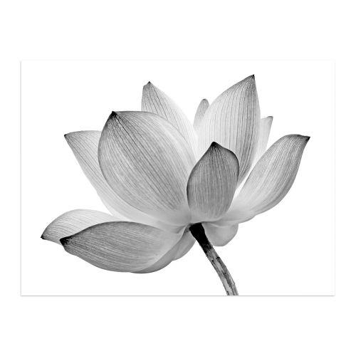 CANVAS FLOWER 60X80
