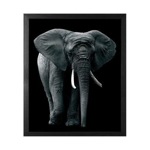 TAULU ELEPHANT 50X60