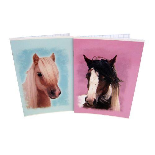 HORSE SWEET A4 NIDOTTU VIHKO 2 ERIL.