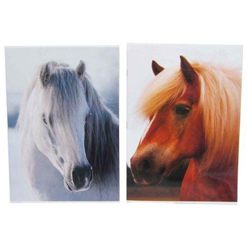 HORSE CLASSIC A4 NIDOTTU VIHKO