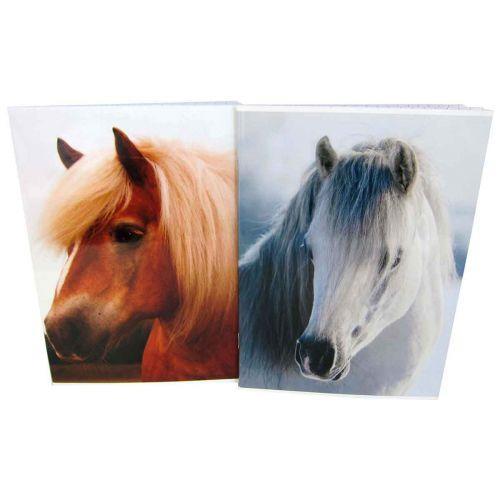 HORSE CLASSIC A5 NIDOTTU VIHKO