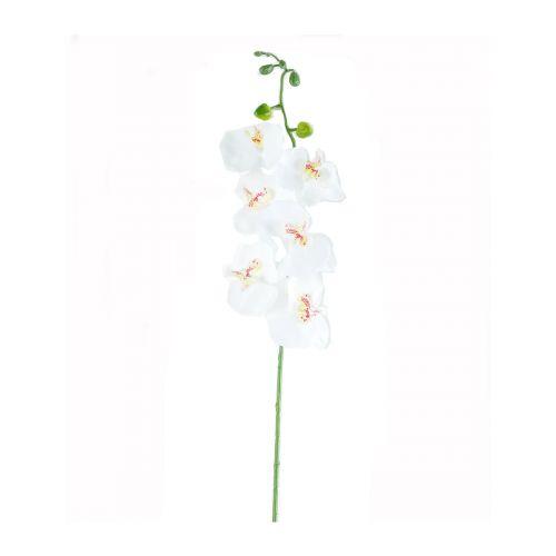 Orkideaoksa 82cm
