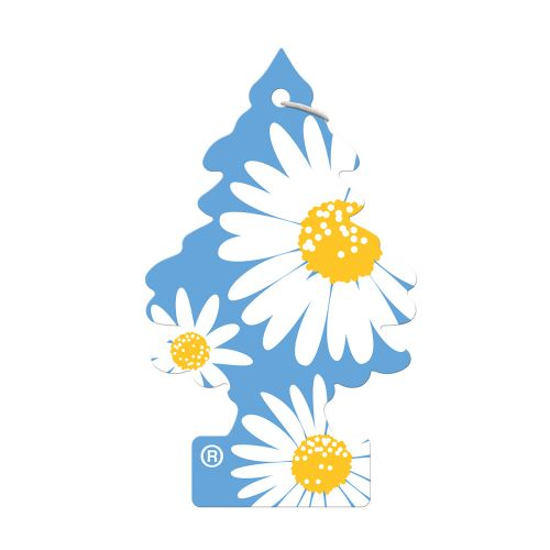 WUNDER-BAUM WUNDERBAUM HAJUKUUSI DAISY FLOWER