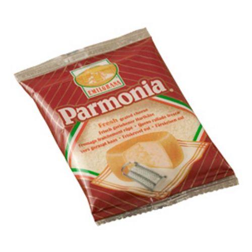 ZANETTI PARMONIA RAASTE 100 G