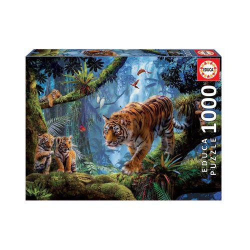 EDUCA 1000 PALAA TIGERS IN THE TREE