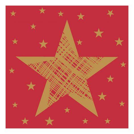 DUNI LAUTASLIINA 24CM SHINING STAR PUNAINEN 20KPL